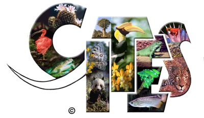 About cites